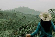 Photo of Cómo hacer voluntariado internacional para viajar por el mundo