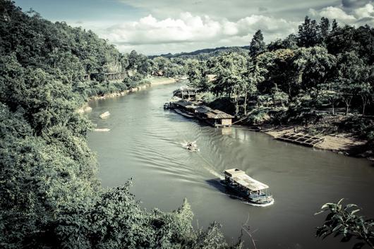Visita a la selva de Bangkok