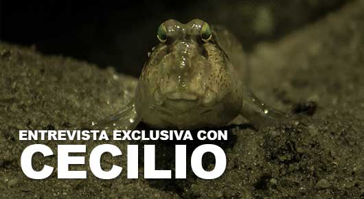 Photo of Entrevista exclusiva con Cecilio