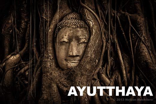 Cabeza del gran Buda en Ayutthaya Tailandia