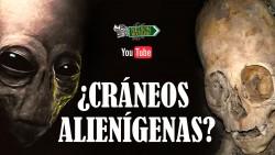 misterio craneos gigantes alienigenas