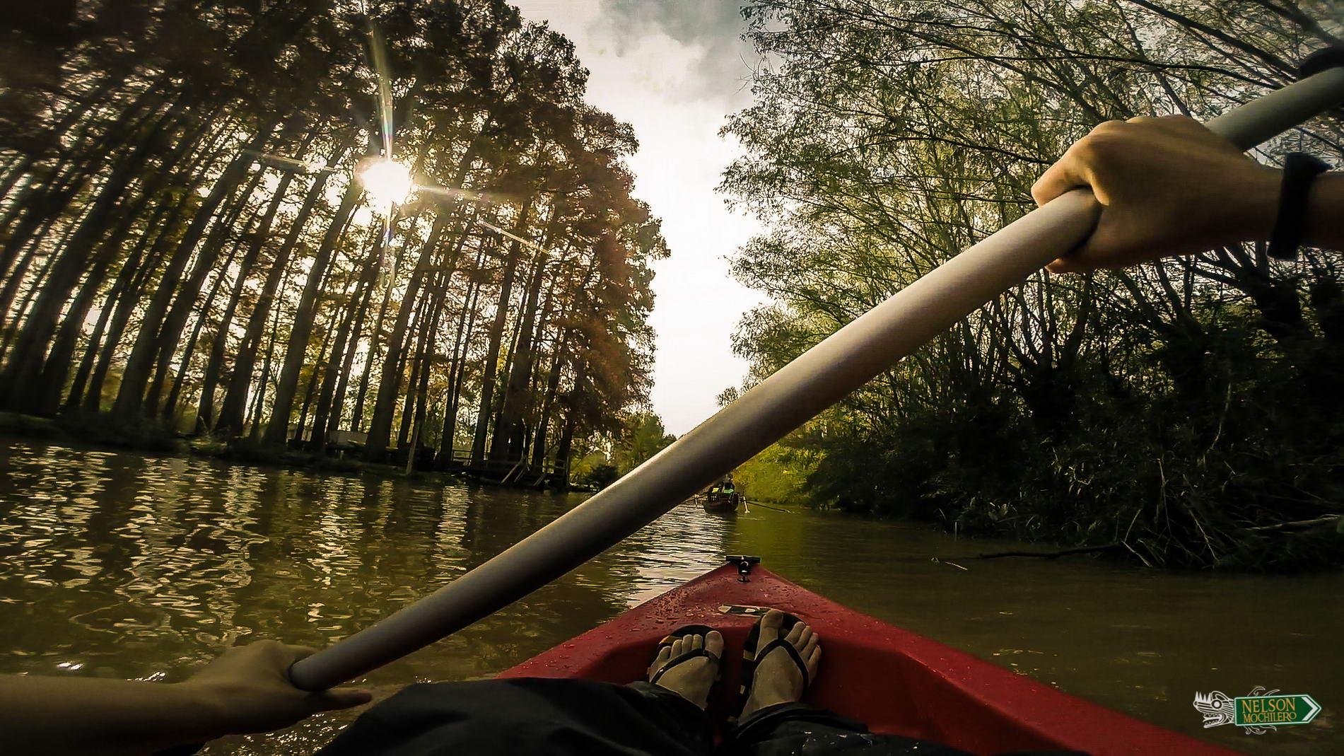 Photo of Qué hacer en Buenos Aires: Kayak en Tigre