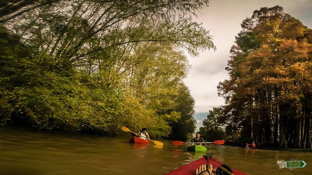 Que hacer en Buenos Aires Kayak Tigre 6