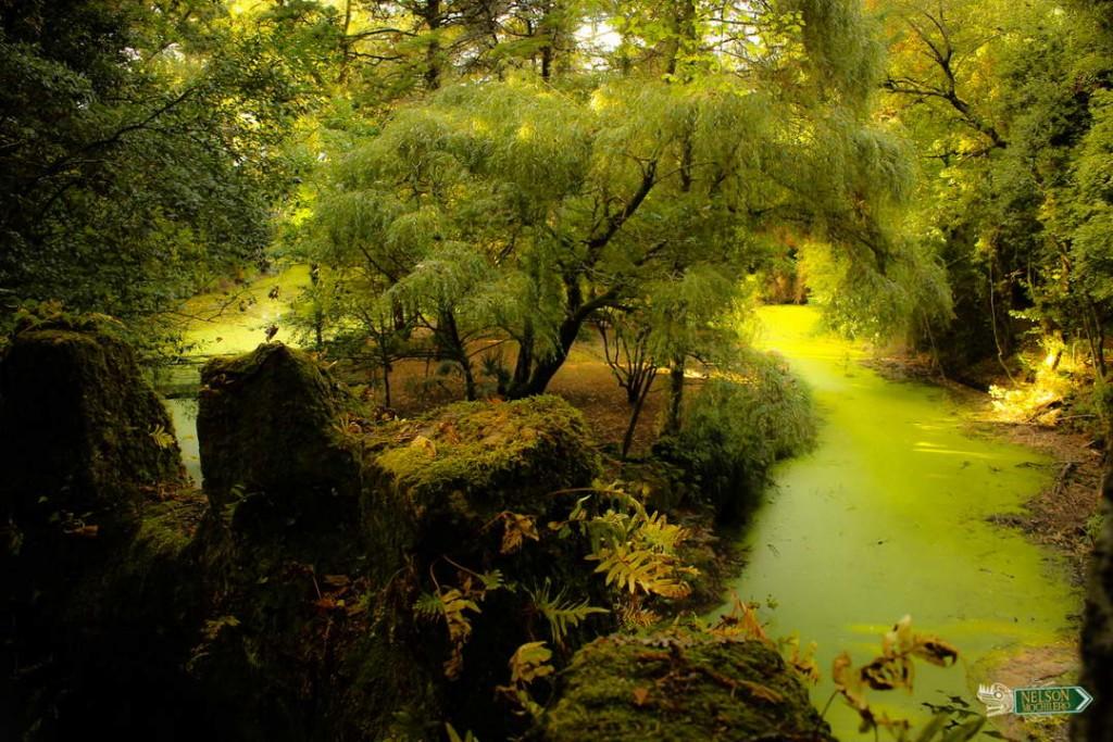 jardin Palacio da Brejoeira