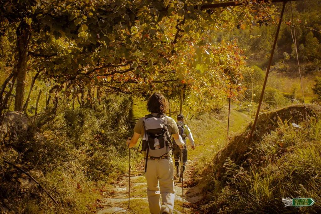 Caminata treekking en grupo - Portugal