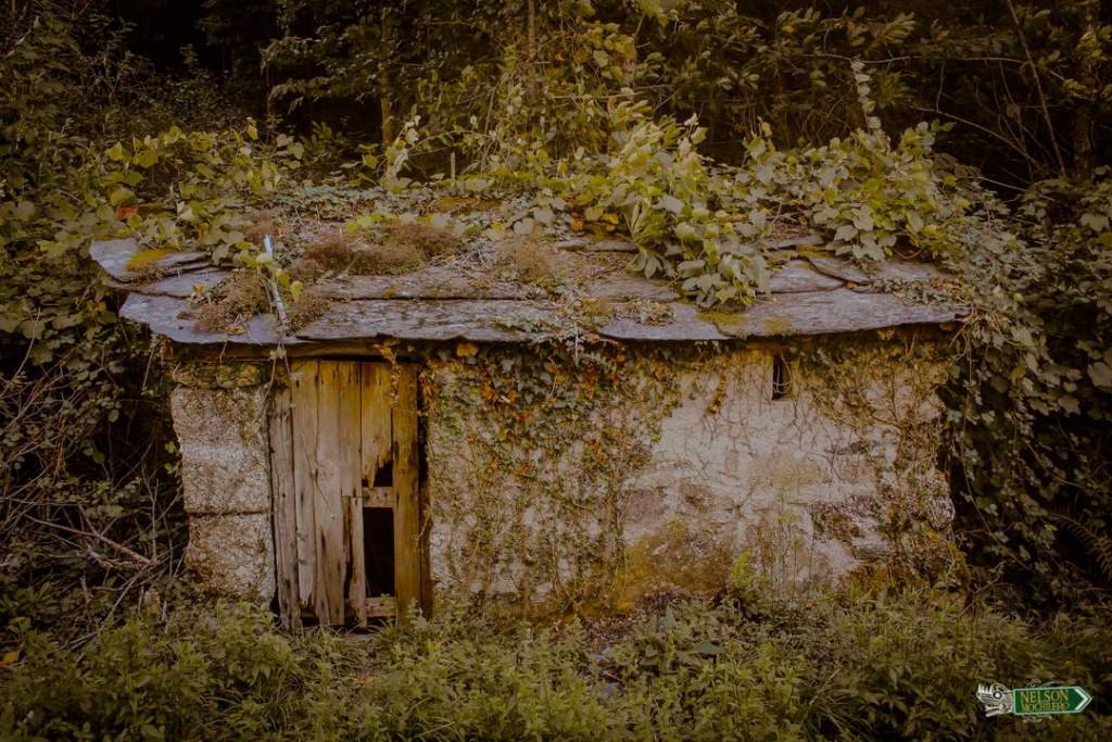 Casa vieja en el camino - Penafiel Portugal
