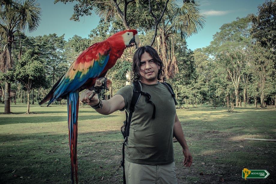 Nelson Mochilero con un Papagayos en la selva peruana - Mochileros