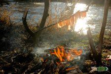 cocinando al aire libre camping nelson mochilero